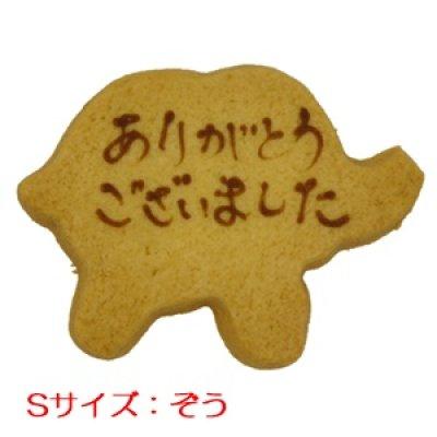 画像1: ぞう型メッセージオーダークッキー(文字色 茶)[S] (1)
